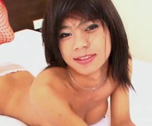 Perfect Ladyboy Tits Stroke