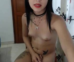 Tranny TS Small Tits Puffy Nipples Small Hard Cock And Balls