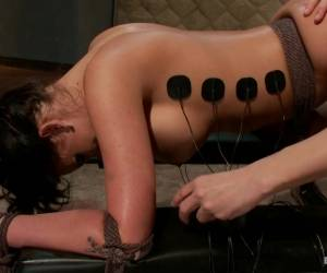 Phoenix Marie Bobbi Starr In Electo Ass Stretching - Electrosluts