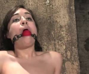 Sasha Grey, Gagged, Pussy Flogged Hard And Nipple Clamped And Orgasmed